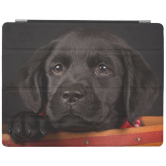 Protection iPad Chiot noir de labrador retriever dans un panier