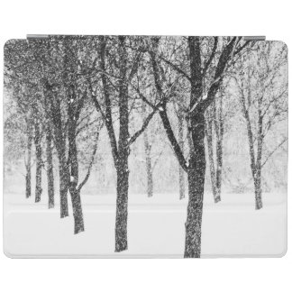 Protection iPad comme je dégrossis avec des arbres