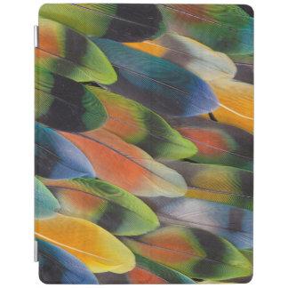 Protection iPad Conception colorée de plume de perruche
