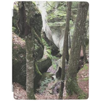 Protection iPad couverture d'iPad avec la belle image des bois