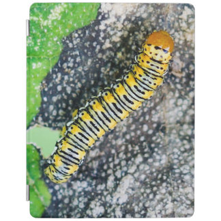 Protection iPad Couverture d'iPad de Caterpillar de mite d'or