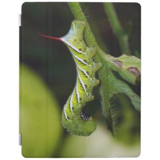 Protection iPad Couverture d'iPad de Hornworm Caterpillar de tabac