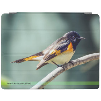 Protection iPad Couverture intelligente d'iPad de Redstart
