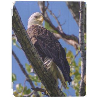 Protection iPad Couverture intelligente d'iPad d'Eagle chauve
