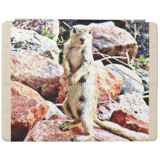 Protection iPad Couverture intelligente d'iPad d'écureuil moulu de