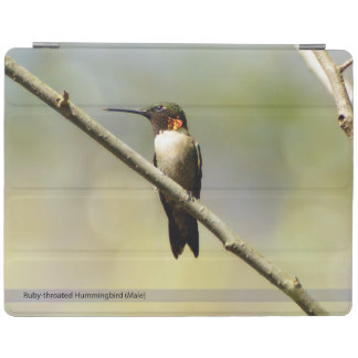 Protection iPad Couverture intelligente d'iPad Throated rouge de