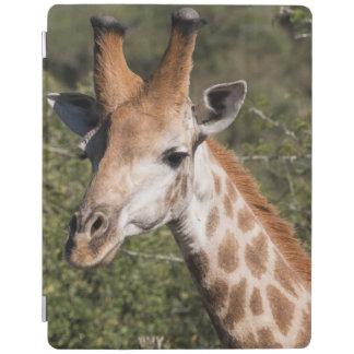 Protection iPad Détail principal de girafe