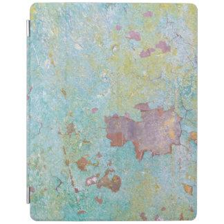 Protection iPad Détails de fort peint Hayden, WA du mur |