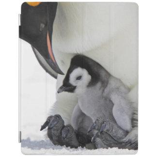 Protection iPad Île de colline de neige du pingouin d'empereur |