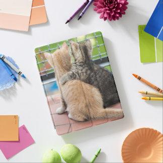 Protection iPad Images de Getty | deux chatons sur un balcon