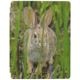 Protection iPad Lapin de lapin de désert