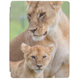Protection iPad Lionne et lion CUB