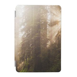 Protection iPad Mini Arbres de séquoia en brouillard de matin avec des