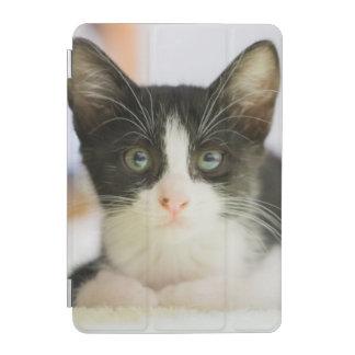 Protection iPad Mini Chaton blanc et noir doux