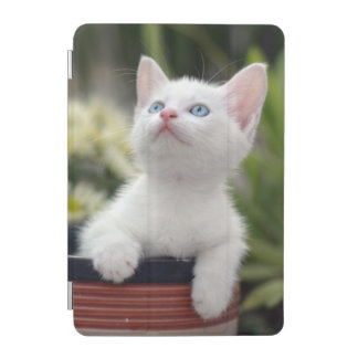 Protection iPad Mini Chaton blanc turc