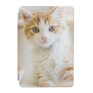 Protection iPad Mini Chaton orange et blanc