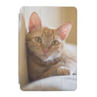Protection iPad Mini Chaton se trouvant sur le divan