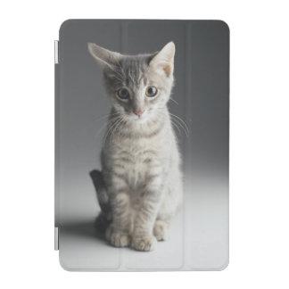 Protection iPad Mini Chaton tigré bleu