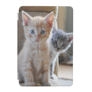 Protection iPad Mini Chatons curieux