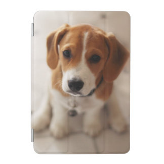 Protection iPad Mini Chiot 2 de beagle