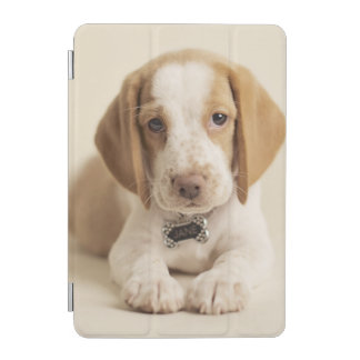 Protection iPad Mini Chiot de beagle