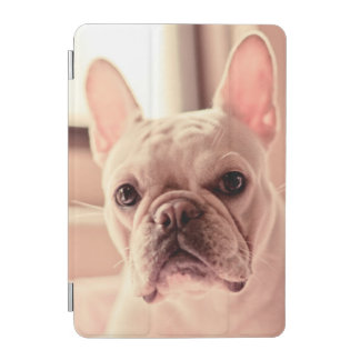 Protection iPad Mini Chiot de bouledogue français
