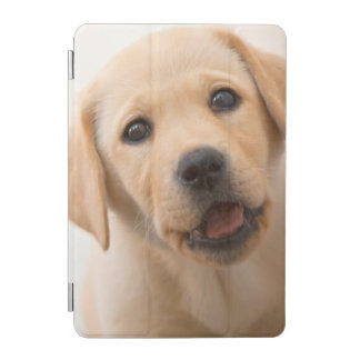 Protection iPad Mini Chiot d'or de Labrador
