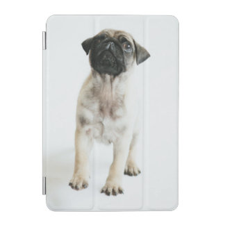 Protection iPad Mini Chiot mignon de carlin