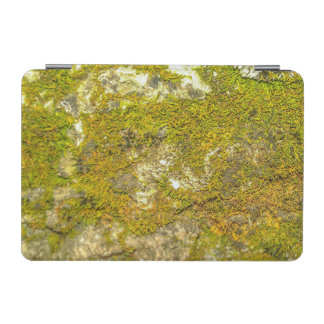 Protection iPad Mini Couverture intelligente moussue d'IPad