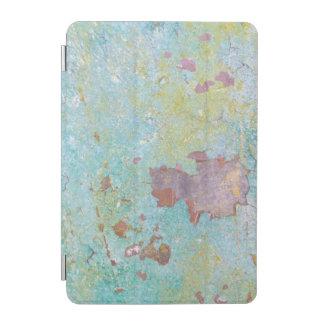 Protection iPad Mini Détails de fort peint Hayden, WA du mur |