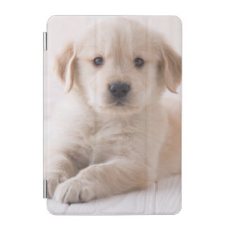 Protection iPad Mini Golden retriever se couchant