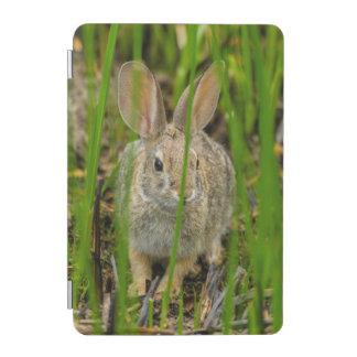 Protection iPad Mini Lapin de lapin de désert