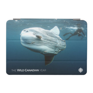 Protection iPad Mini Mola de Mola