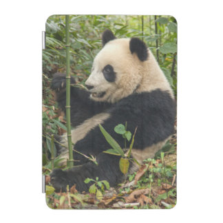 Protection iPad Mini Panda mangeant le bambou