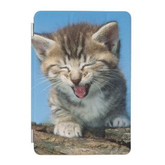 Protection iPad Mini Petit chaton dans un arbre