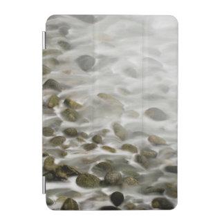 Protection iPad Mini Réservation en pierre d'état de Lobos de point de