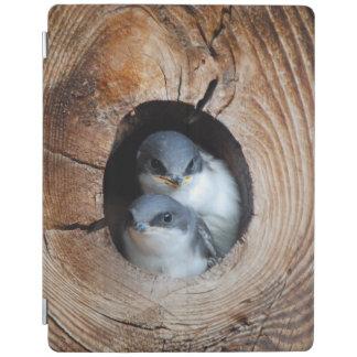 Protection iPad Oiseaux de bébé