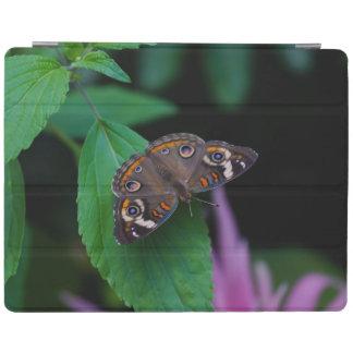 Protection iPad Papillon repéré