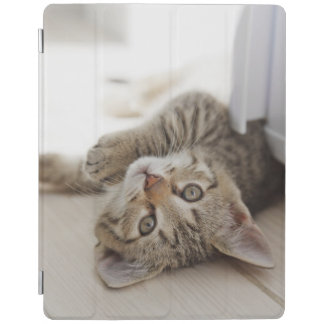 Protection iPad Petit chaton mignon
