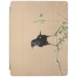 Protection iPad Petit oiseau noir sur la branche de Bush
