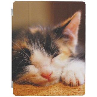 Protection iPad Petit sommeil de Kitty