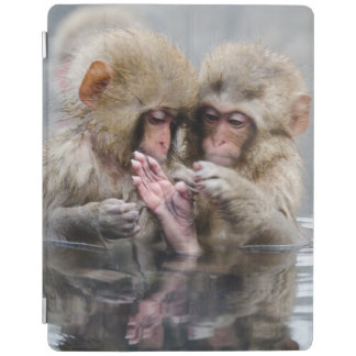 Protection iPad Petits singes | Hot Springs, Japon