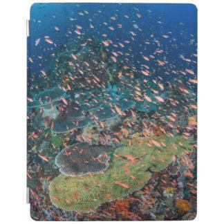 Protection iPad Poissons nageant au-dessus du récif