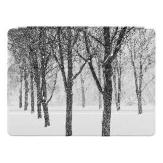 Protection iPad Pro comme je dégrossis avec des arbres