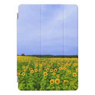 Protection iPad Pro Cover Champ des tournesols