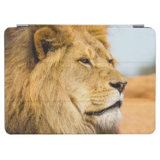 Protection iPad Pro Grand lion regardant loin