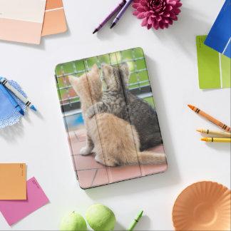 Protection iPad Pro Images de Getty | deux chatons sur un balcon