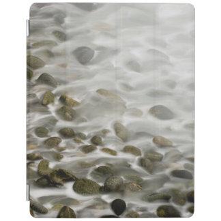 Protection iPad Réservation en pierre d'état de Lobos de point de