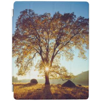 Protection iPad Réserve forestière noire des chênes | Cleveland,