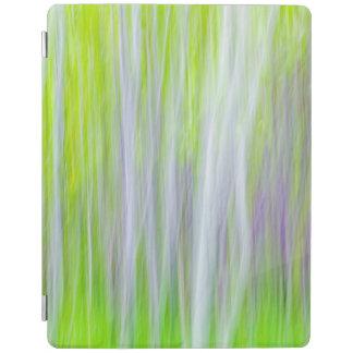 Protection iPad Résumé de la traînée de rivière des arbres |